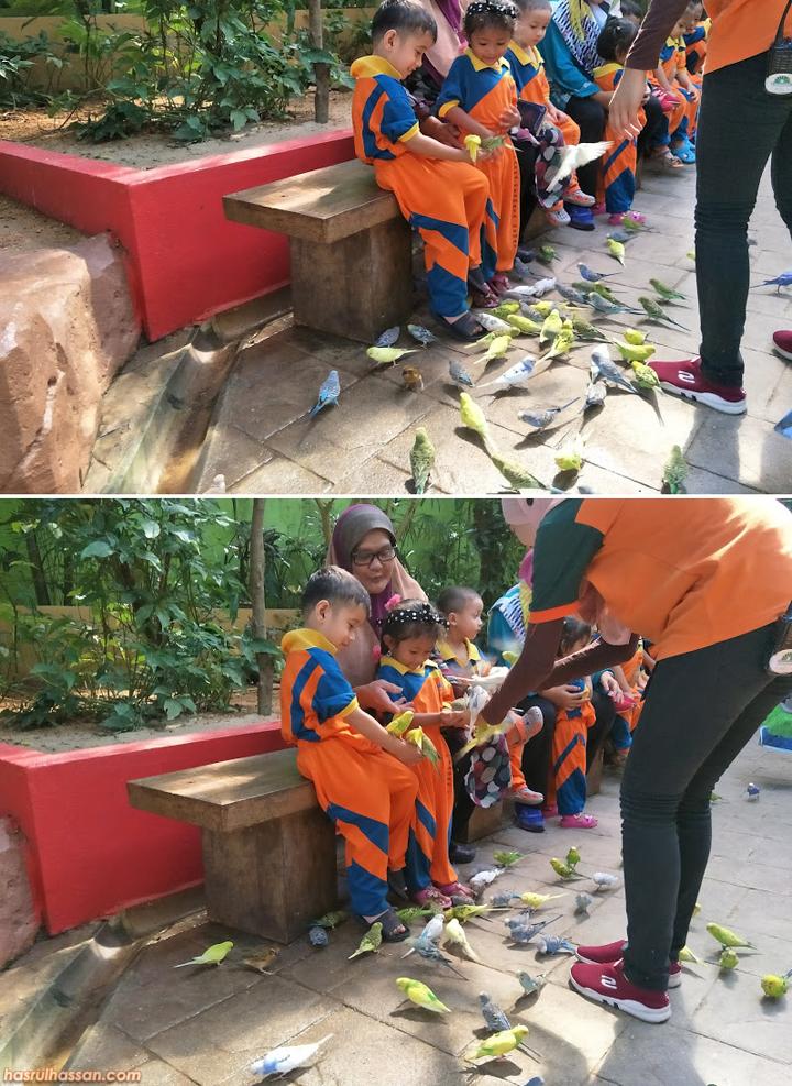 Gambar Anak-Anak Berseronok di Bird's Paradise Pulau Langkawi