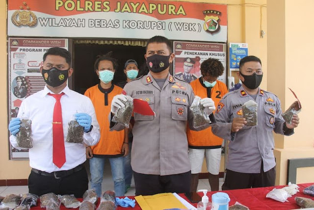 Polres Jayapura Amankan 4 Orang Terkait Kepemilikan 1,6 Kg Ganja