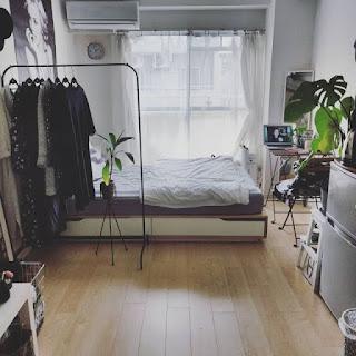 Dekorasi kamar Tidur Cowok Putih dan Tumbuhan