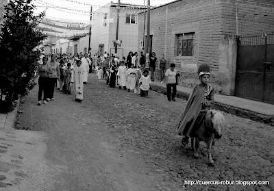 En burro por las calles de Santa cruz de las Flores