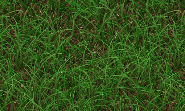 Grass Patterns For Photoshop and Elements