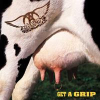 [1993] - Get A Grip