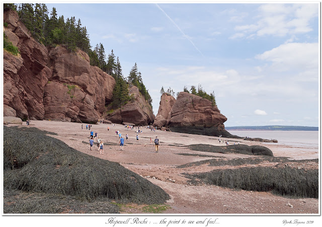 Hopewell Rocks: ... the point to see and feel...