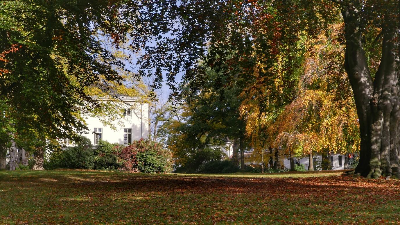 Herbstlicher Park, parklandschaft im Herbst