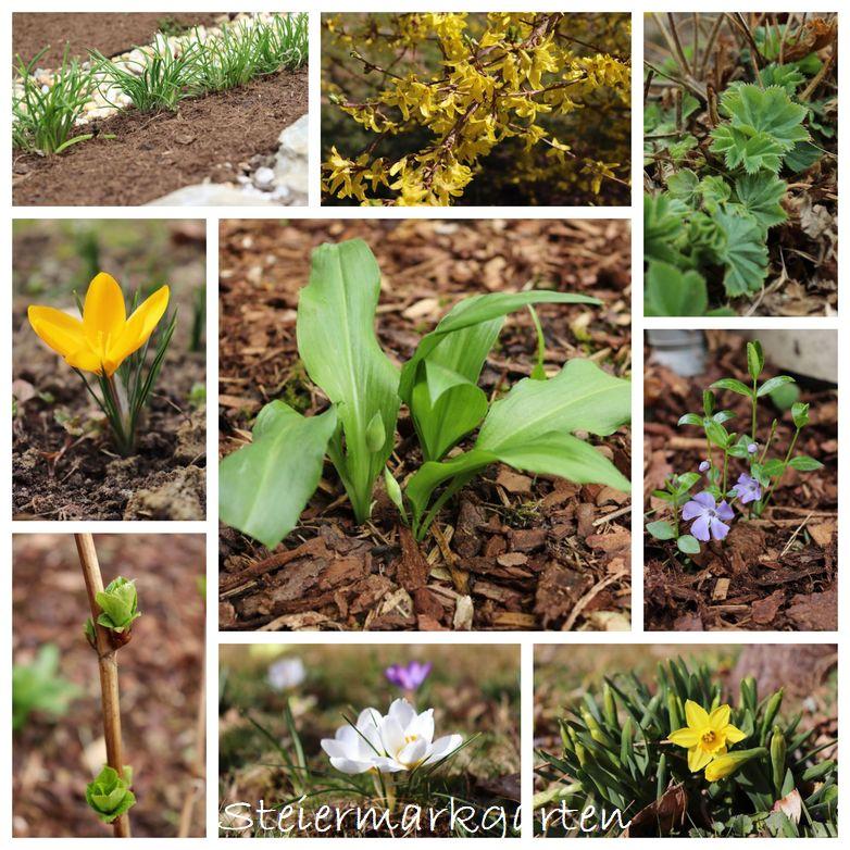 Frühling-Collage-Steiermarkgarten