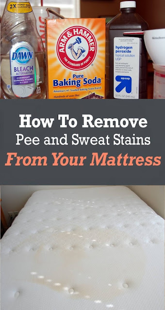 How To Remove Pee and Sweat Stains From Your Mattress