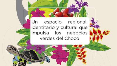 Expoambiente Chocó, la feria de negocios verdes más grande de la región se tomará Quibdó del 27 al 29 de septiembre