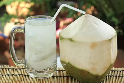 segarnya bisnis es kelapa muda berapa modalnya nnt169Ab0k