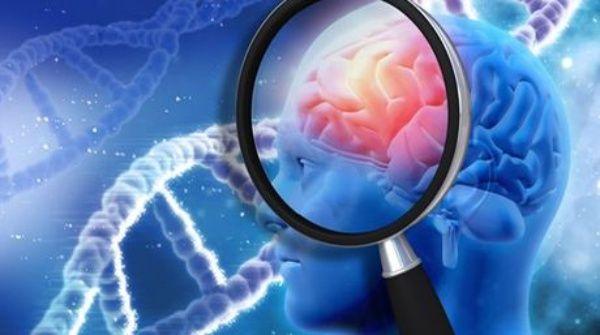 Estudios revelan origen del alzheimer desde el embarazo
