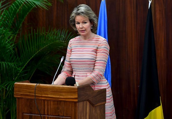 Queen Mathilde wore a bicolor tulle midi dress by Belgian fashion house Natan, and gold earrings by Natan