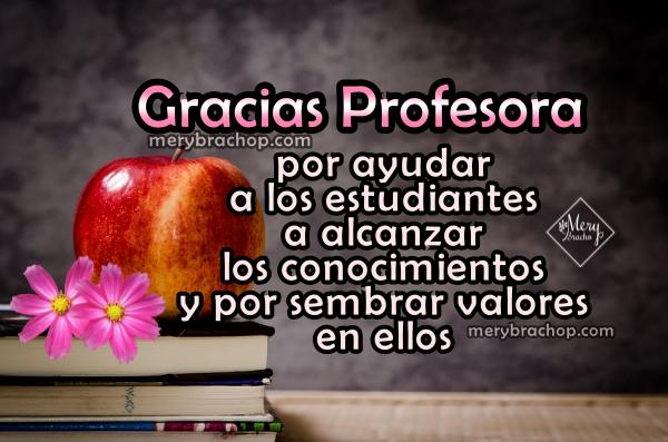 Frase De Agradecimiento A Un Profesor