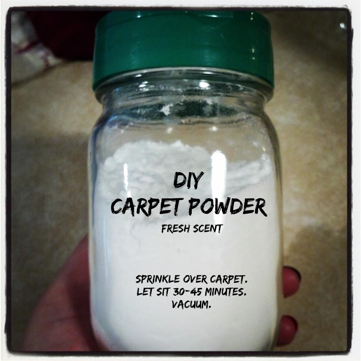 An Onion Exposed: DIY Carpet Powder