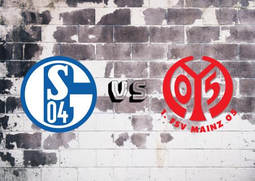 Schalke 04 vs Mainz 05  Resumen