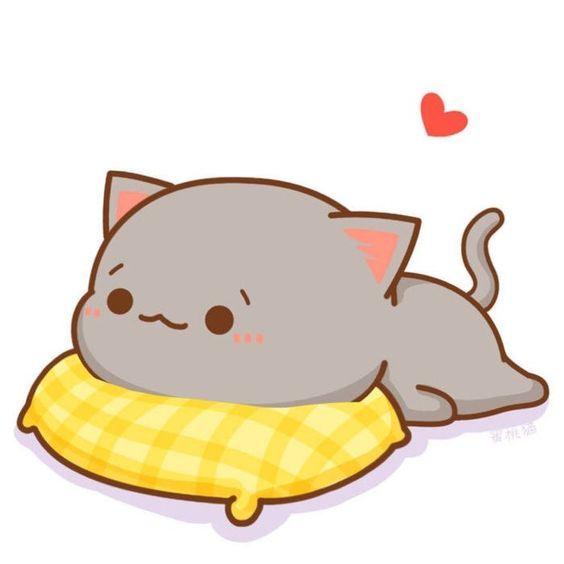 Ảnh avatar mèo dễ thương