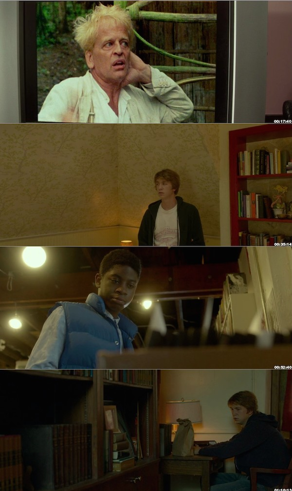 Me and Earl and the Dying Girl 2015 BluRay 720p 800MB