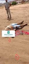 Mairi:Assassinato  nesse Domingo pela manhã