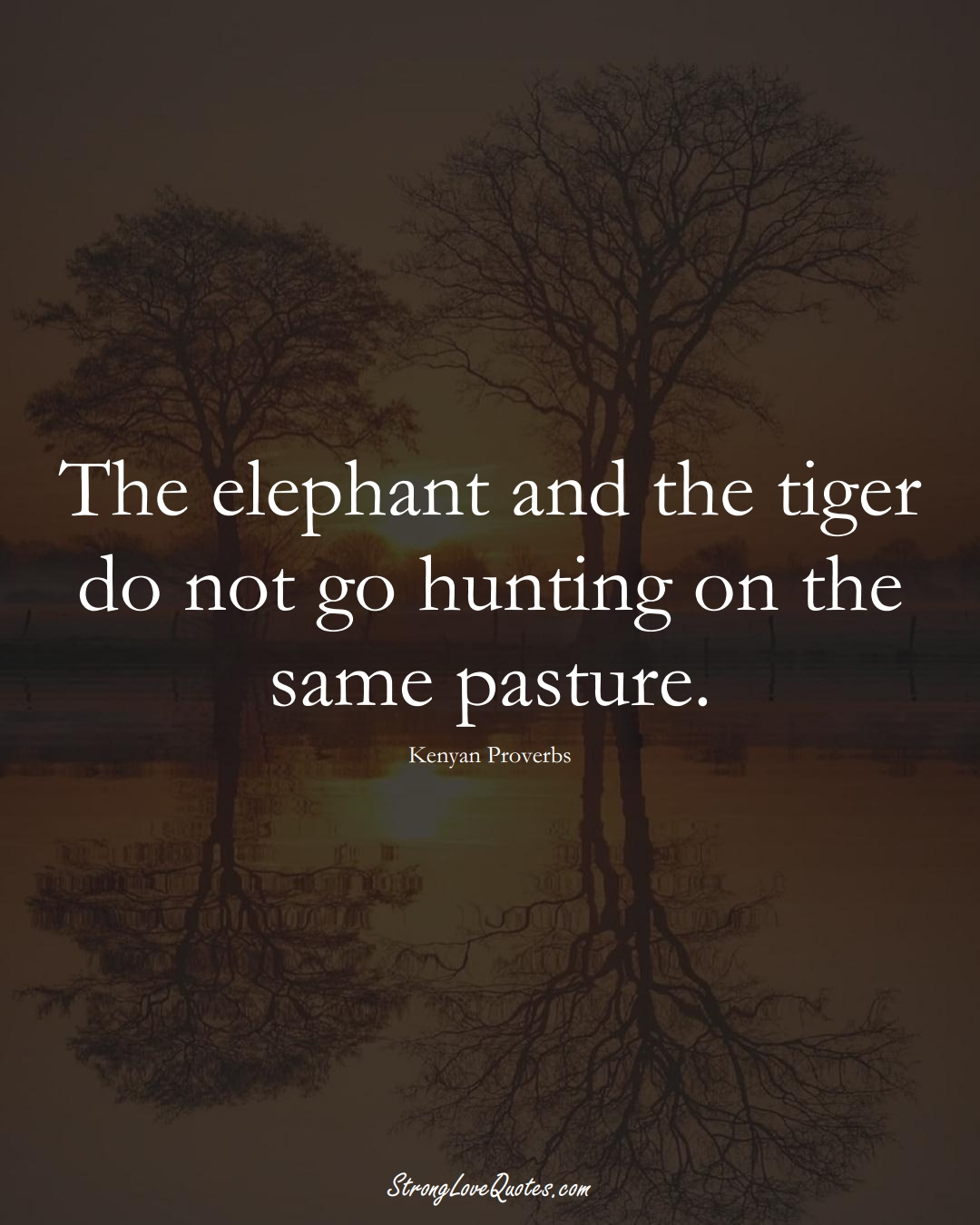 The elephant and the tiger do not go hunting on the same pasture. (Kenyan Sayings);  #AfricanSayings