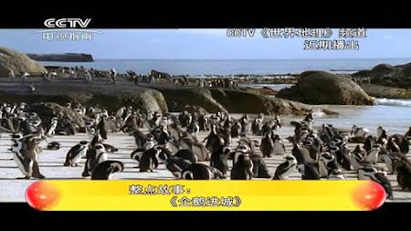 Frekuensi siaran CCTV TV Guide di satelit ChinaSat 6B Terbaru