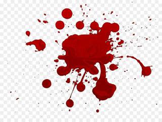 معنى الدم في حلم العزباء