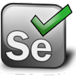 #Selenium-webdriver Unknown policy: DnsPrefetchingEnabled