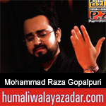 https://www.humaliwalayazadar.com/2019/09/mohammad-raza-gopalpuri-nohay-2020.html