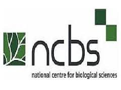National Centre for Biological Sciences Recruitment 2017,Technical Assistant,31 Posts,@ ssc.nic.in,rajasthan.gov.in,government job,sarkari bharti,gov.vacancy