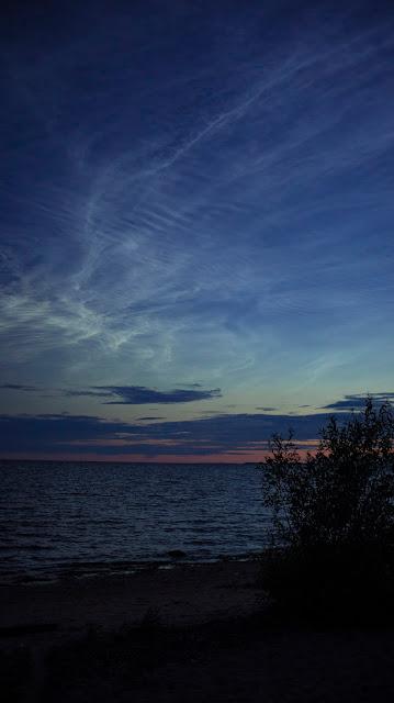 Tarhovka sea beach white night sunset SPb