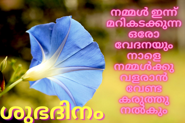 Suprabhatham | subhadinam quotes in Malayalam with images സുപ്രഭാതം ശുഭദിനം