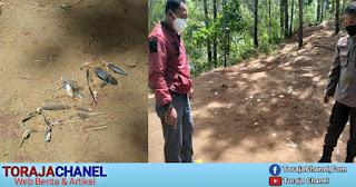 Lagi Polisi Bubarkan Pelaku Judi Sabung Ayam Di Rembon