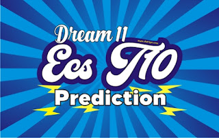Cricfrog Who Will win today European Cricket Series T10 Linkoping vs SeaSide Semi Final ECS Ball to ball Cricket today match prediction 100% sure