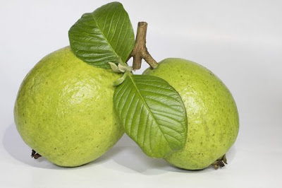 Guava is plentiful in nutrient A, nutrient C and cancer prevention agents