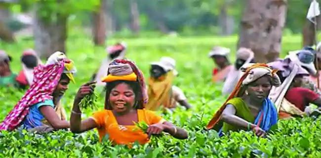 ভারতের বিভিন্ন জনগোষ্ঠীর সংক্ষিপ্ত বর্ণনা