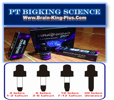 Braining Plus | Brainking Plus Indonesia