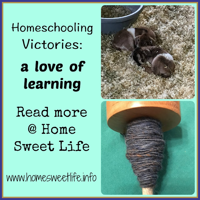 homeschooling victories, a love of learning, hands on learning, nature, art
