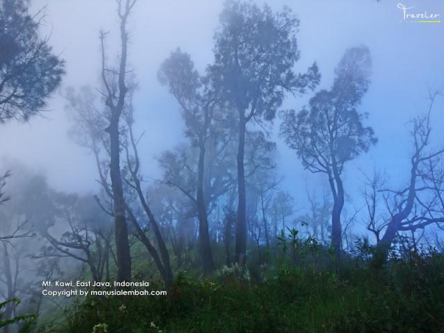 Pendakian Gunung Kawi via Keraton