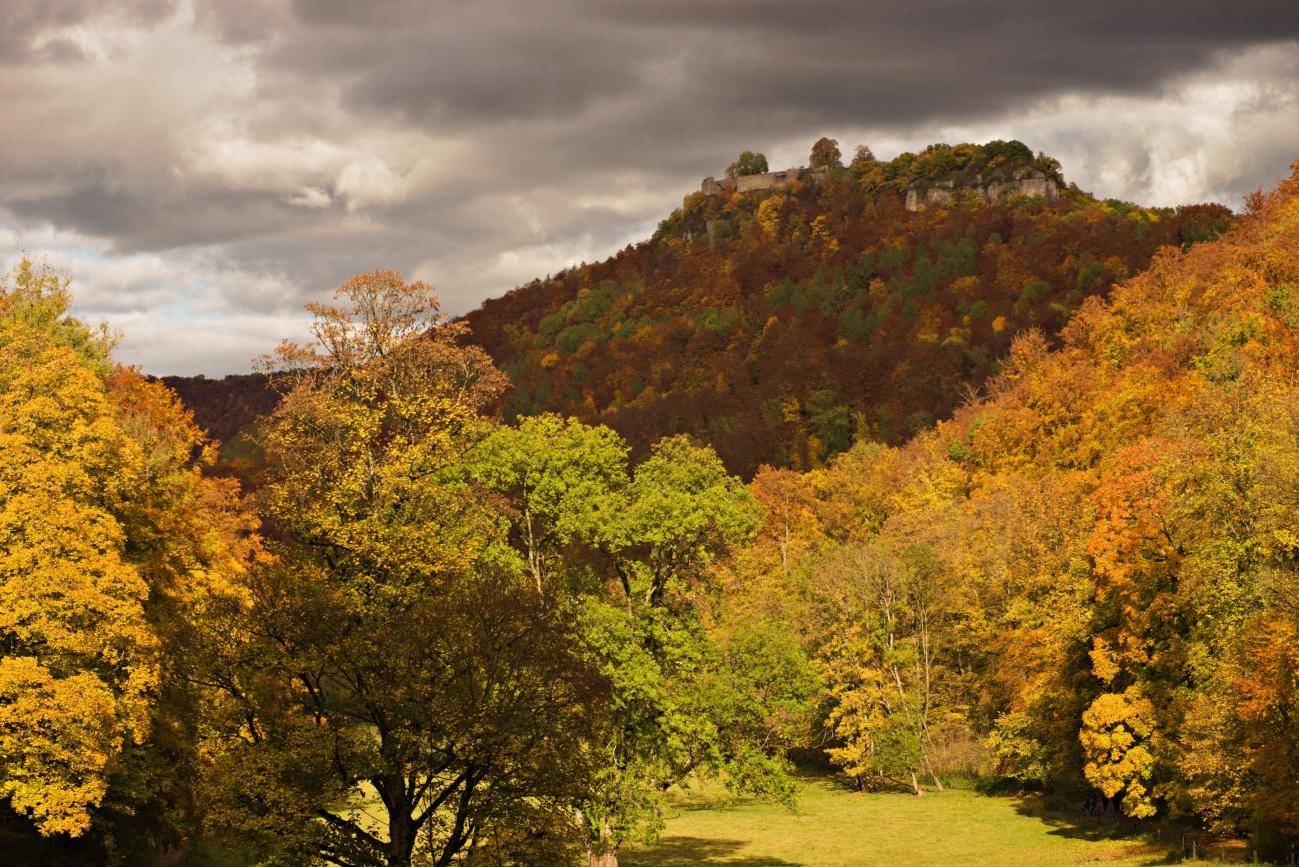 Mit einem 1€ Zoom-Objektiv durch den Herbst (4)