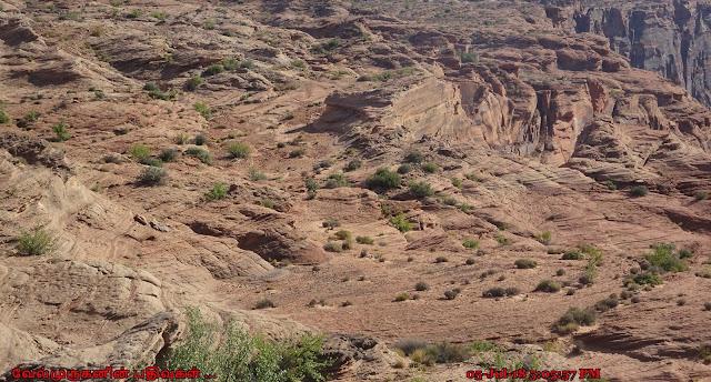 Glen Canyon Rim Page