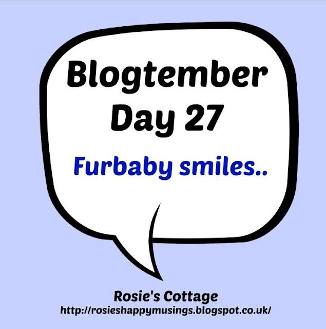 Blogtember day 27