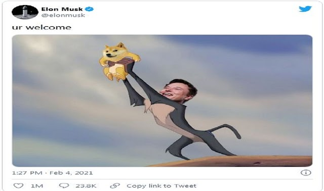 Dogecoin पर Elon Musk ने क्या कहा भारतीय Crypto Exchanges तक पहुंचता है,Dogecoin Mania Reaches Indian Crypto Exchanges.www.mediahindi.com