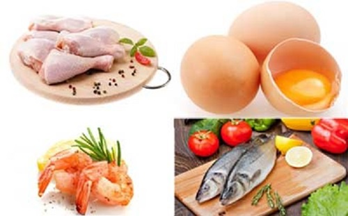 pengertian dan fungsi protein