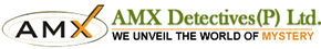 Professional Private Detective Agency in Delhi, Noida, Gurgaon, Faridabad | AMX Detective Agency