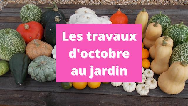 Les travaux d'octobre au jardin en permaculture (vidéo)