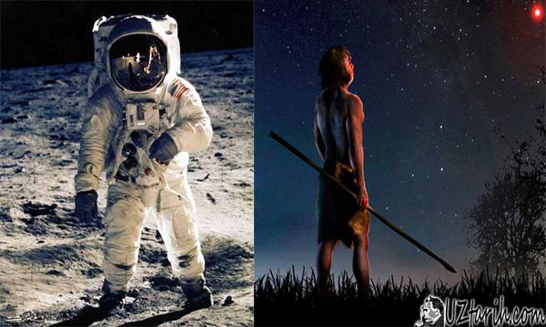 mankind, human species