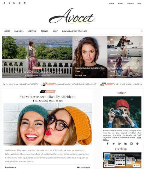 avocet Seo friendly theme
