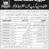 Misali Ravian Group of Schools And Colleges System Sargodha Jobs