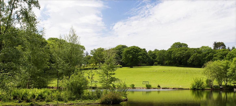Serene lake at Pinetum Gardens