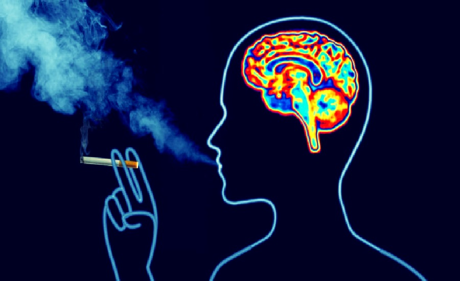 Effects of Smoking on Brain