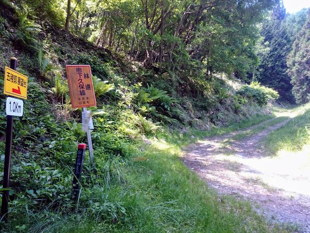 五稜郭展望台 遊歩道