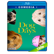 Días Perrunos (2018) BRRip 720p Audio Dual Latino-Ingles