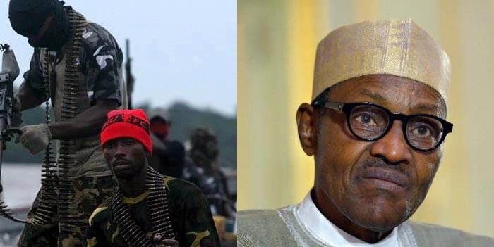 Operation Crocodile Smile: Avengers writes Buhari